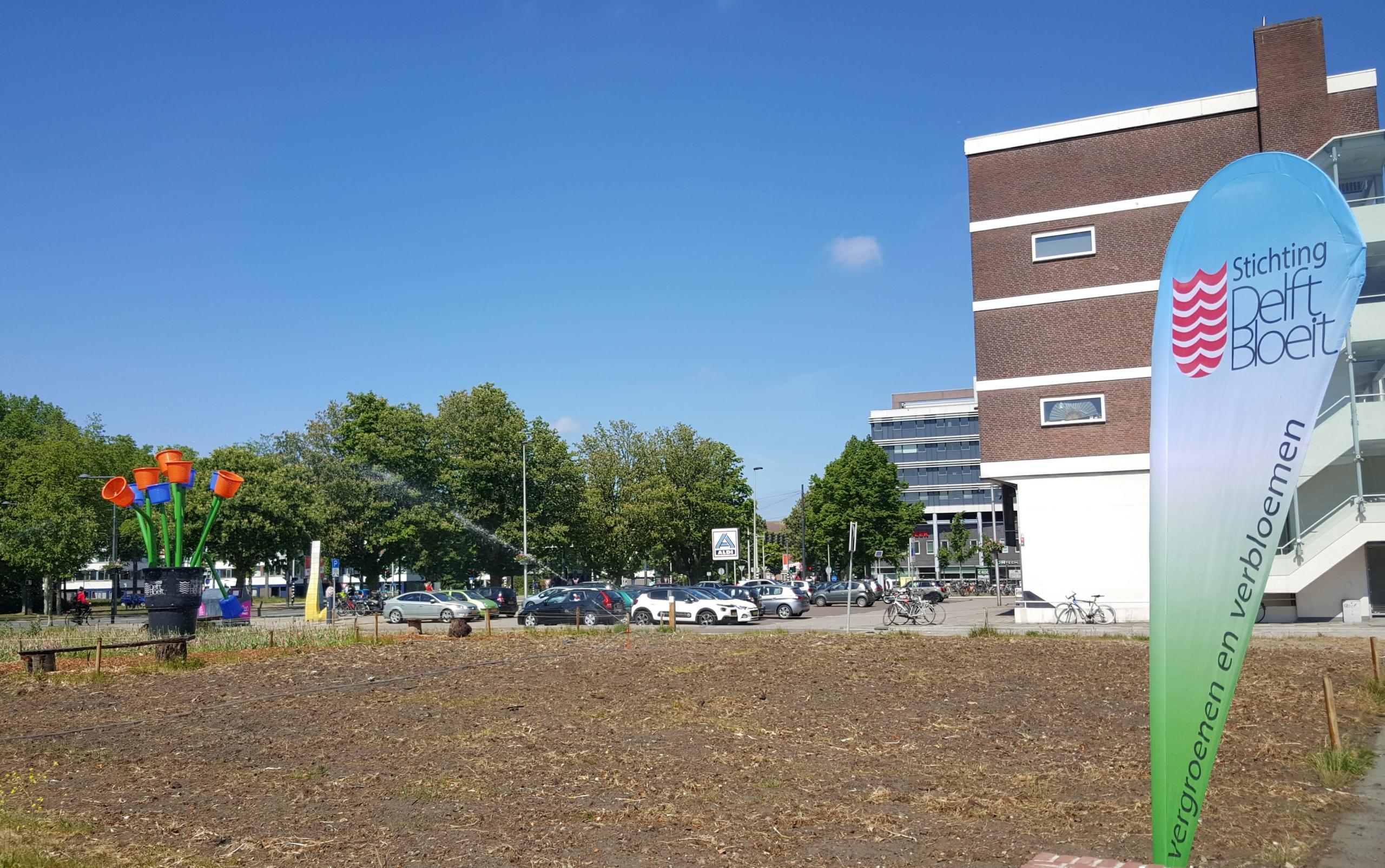 foto van het veld waar de zonnebloemen komen in Nieuw Delft
