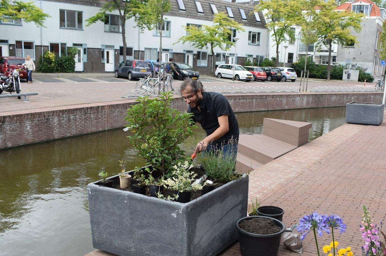 Bewoners Coendersbuurt vult plantenbak