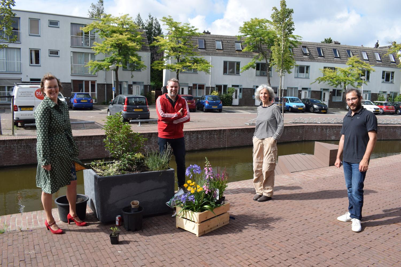 Wethouder Huijsmans met bewoners Coendersbuurt en plantenbak